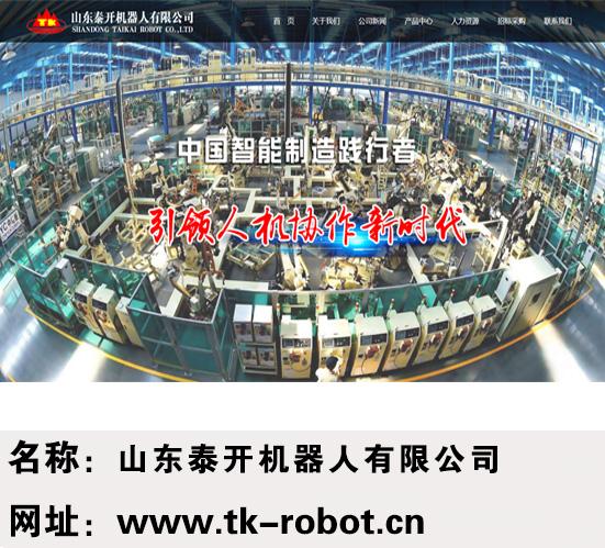 山东泰开机器人有限公司